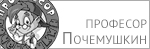 Pochemushkin
